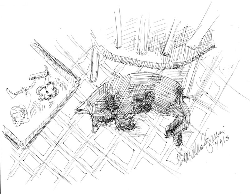 ink sketch of cat on floor