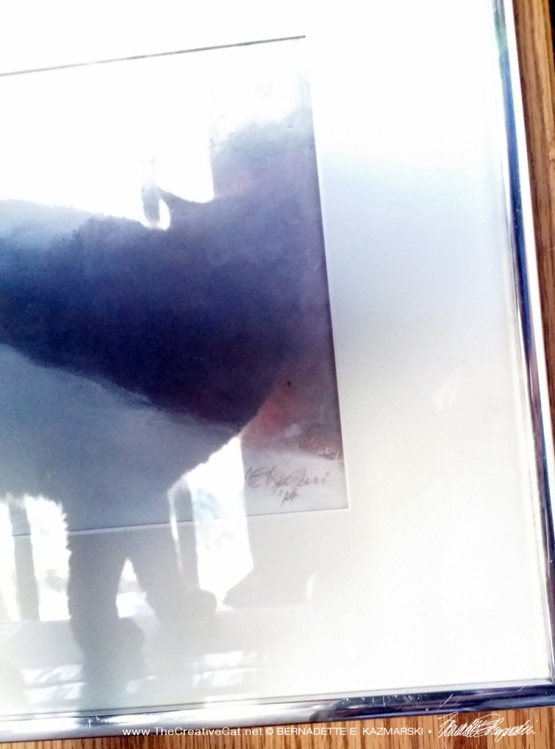 photo of cat reflected in glass