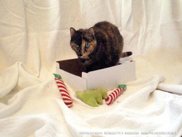 tortoiseshell cat with christmas toys