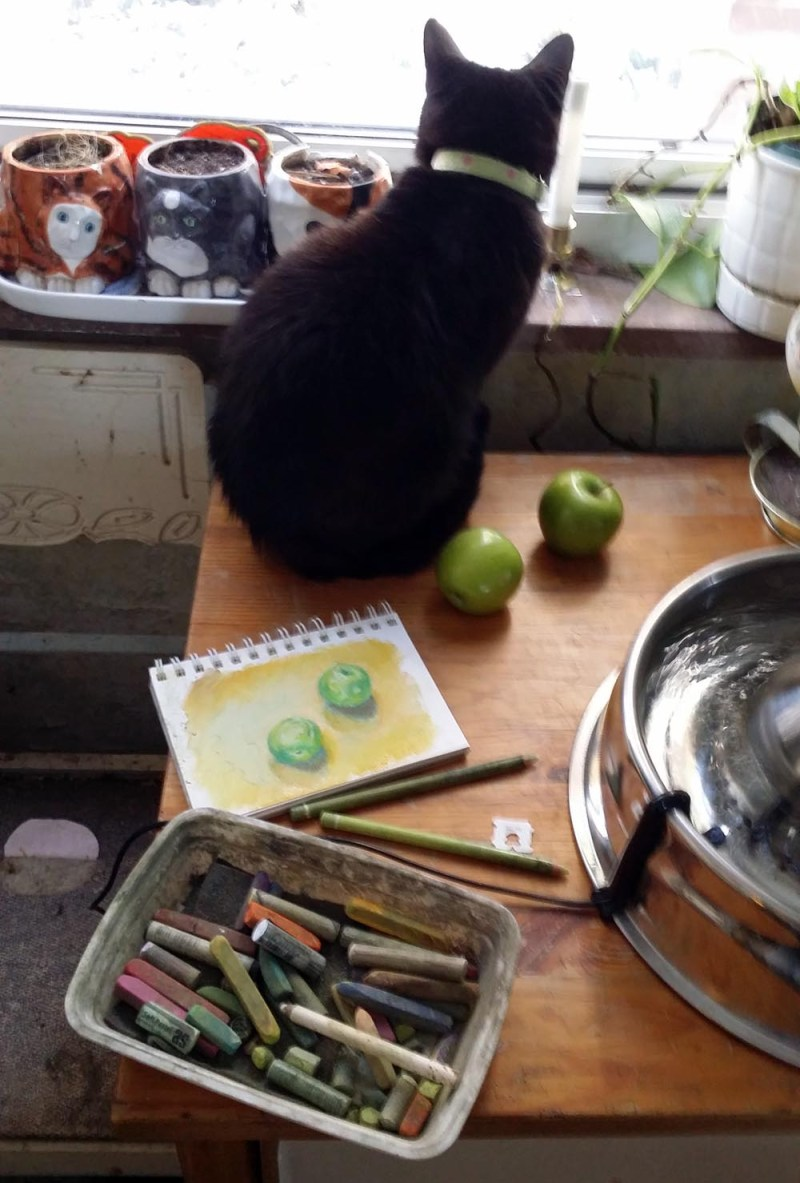 black cat with apples, painting and pastels