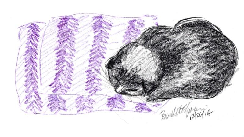 colored pencil sketch of black cat