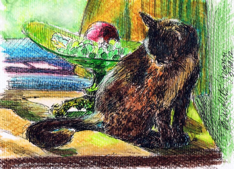 ink and watercolor sketch of cat with still life