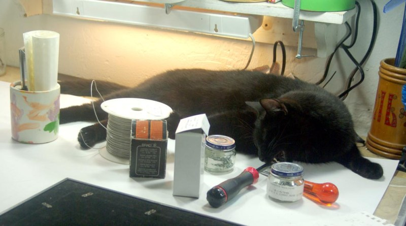 black cat playing with tools