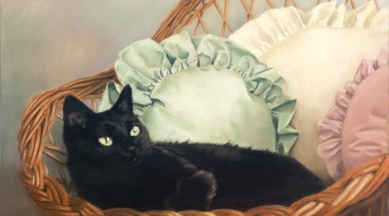 portrait of black cat on wicker chair
