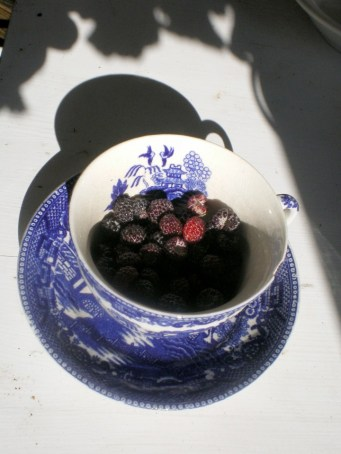 cup with raspberries