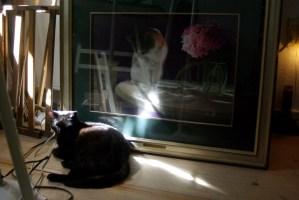 black cat sleeping in front of painting on floor
