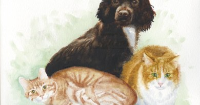 watercolor portrait of dog and two cats