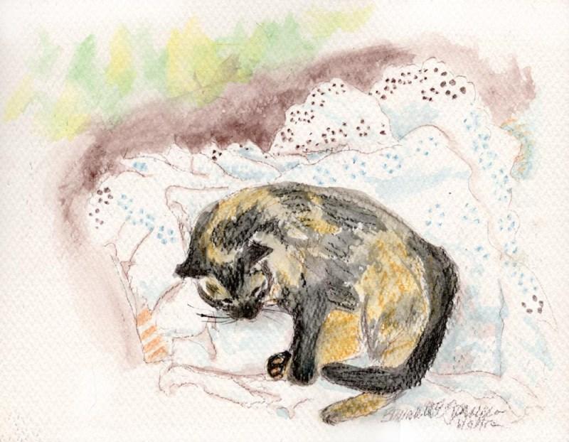 paitning of tortoiseshell cat napping on eyelet pillowcase