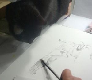 black cat watching pencil