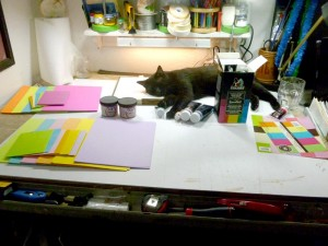 cat and art materials on table