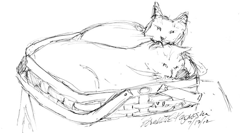 sketch of two cats in a basket