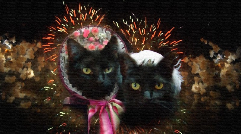 digital painting of two black cats in period dress