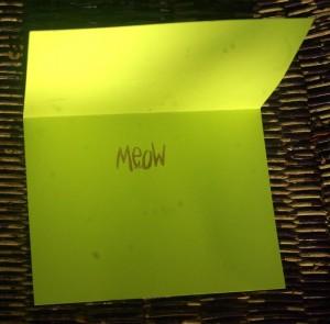 """Meow"" printed inside each card!"