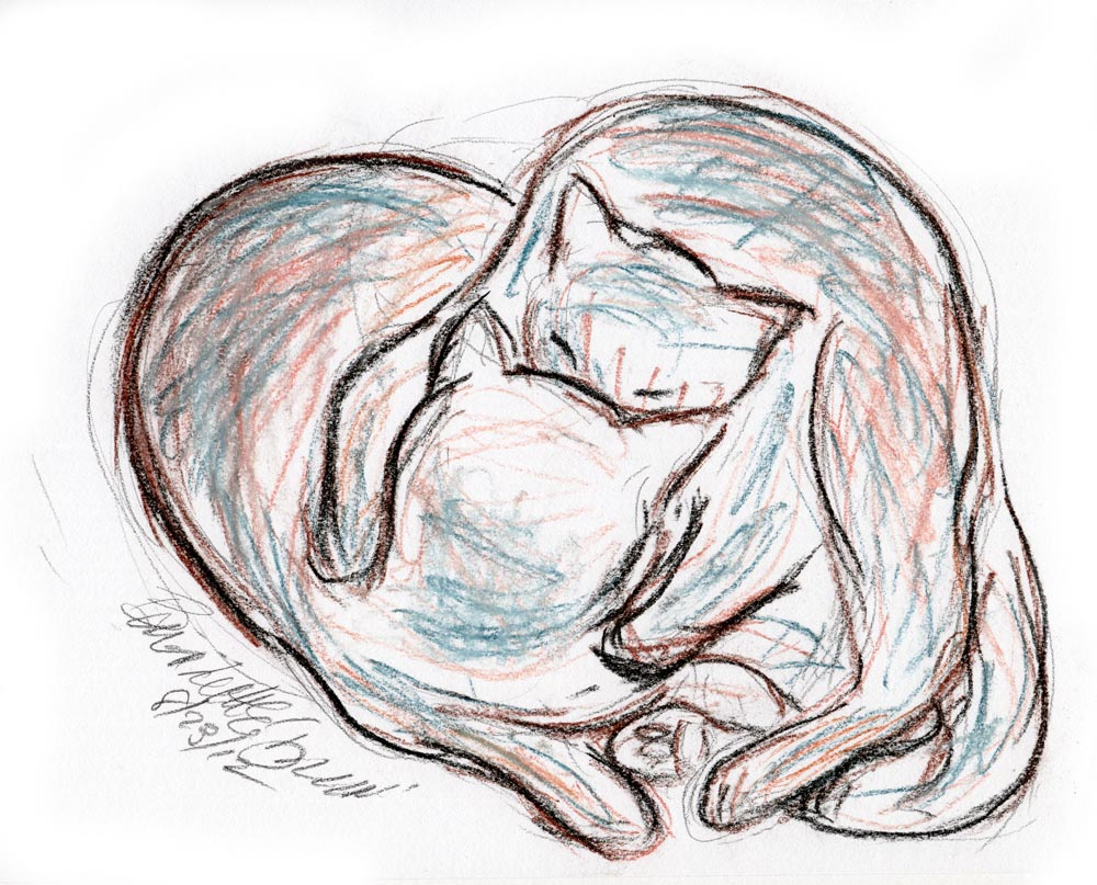 Daily Sketch Reprise: Love Cats
