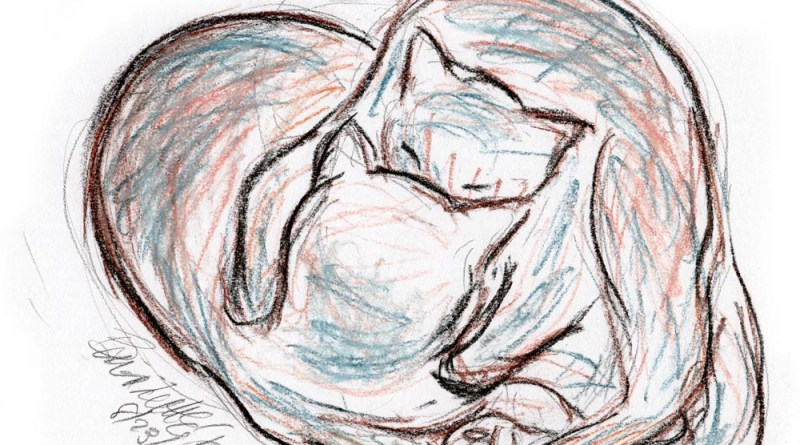 pastel sketch of cats cuddling