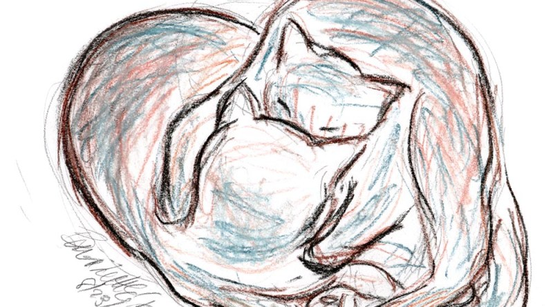 pastel sketch of two cats