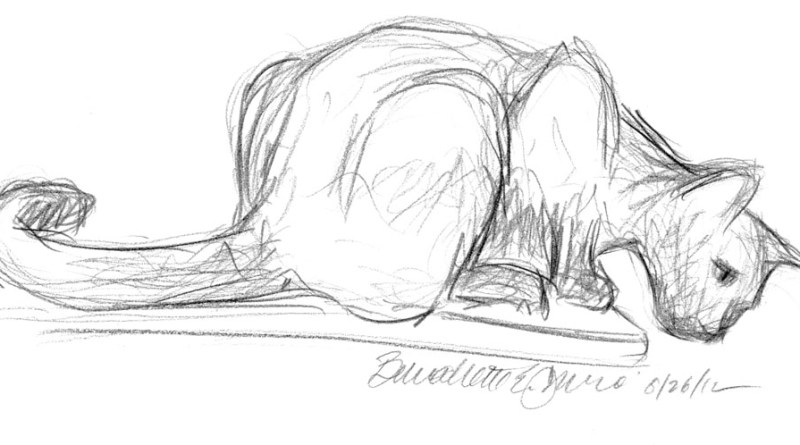 pencil sketch of cat crouched on edge of table