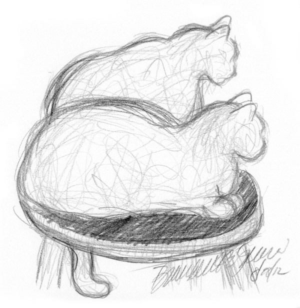 pencil sketch of cats