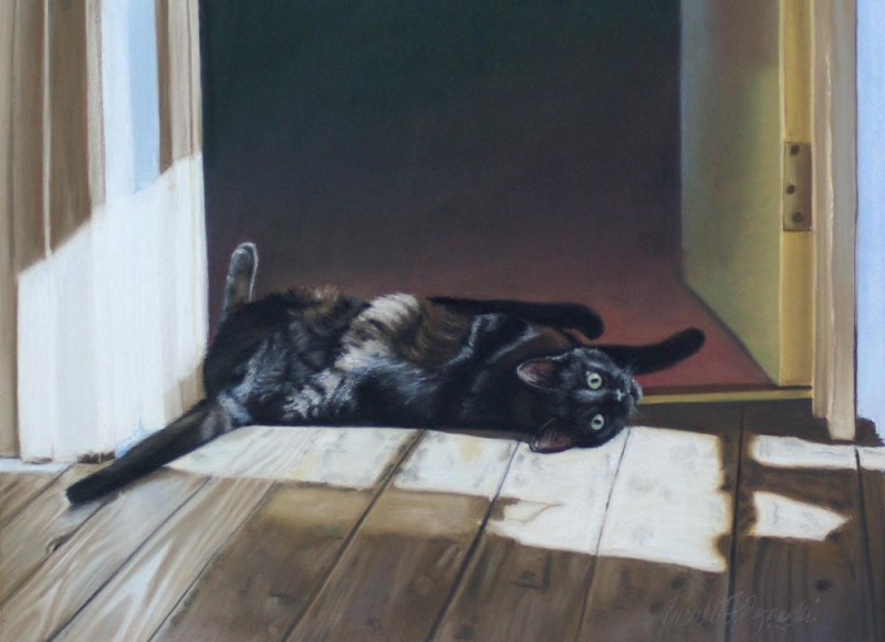 portrait of black cat on floor