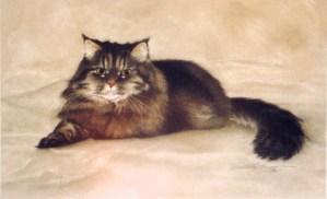 painting of tabby persian cat
