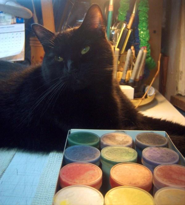 black cat with paints