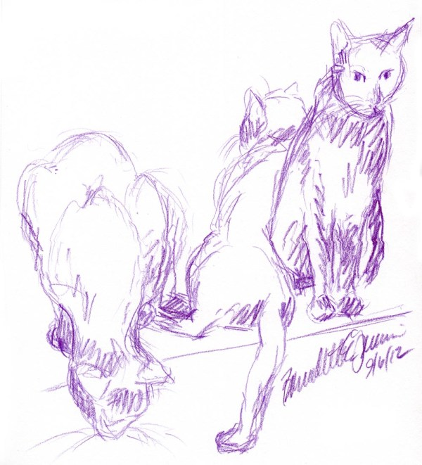 colored pencil sketch of three cats