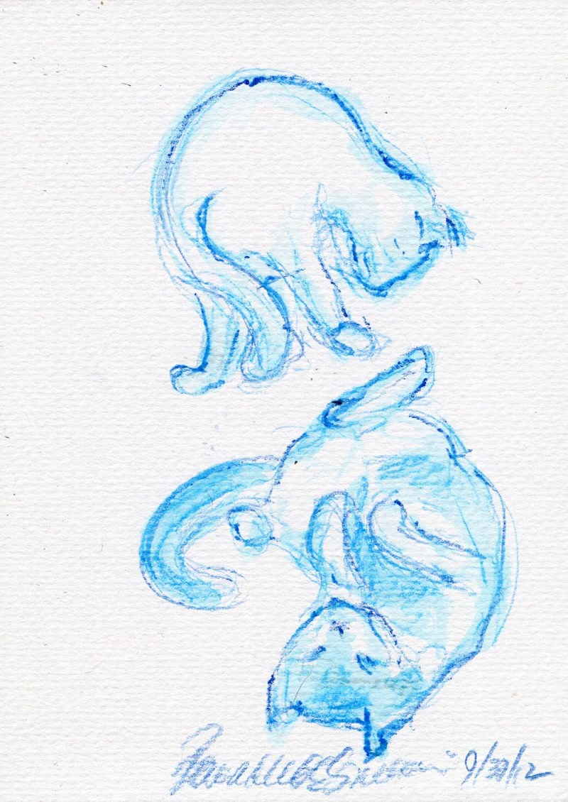 watercolor sketch of two cats