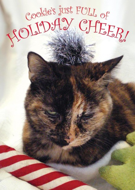 holiday card with tortoiseshell cat