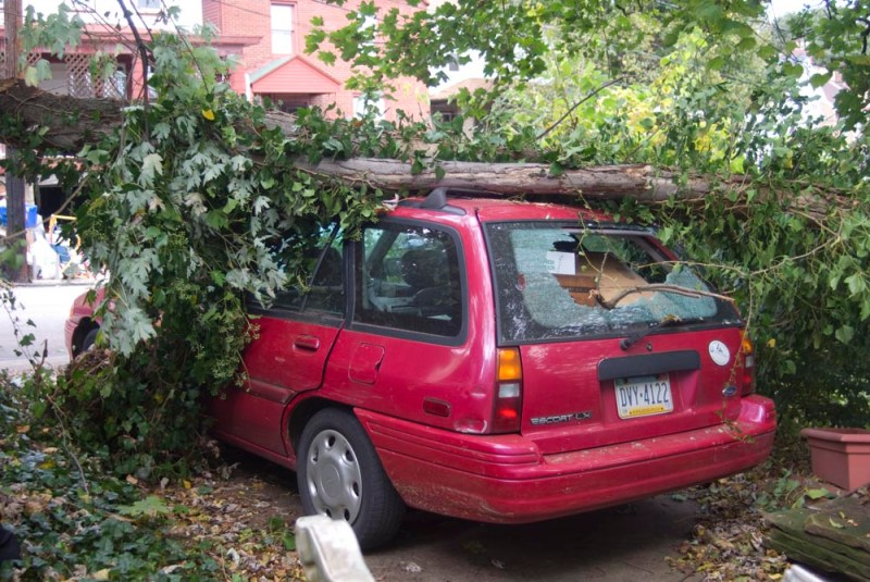 car with branch on roof