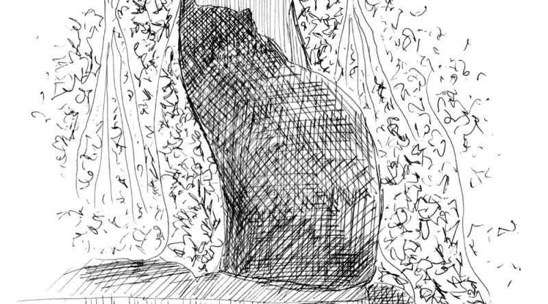 ink sketch of cat looking out window