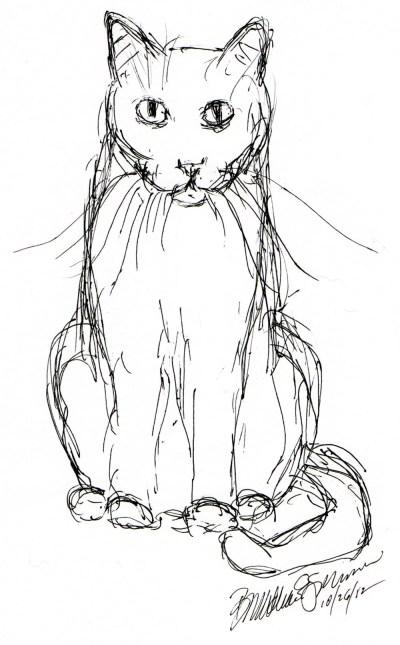 ink sketch of cat staring
