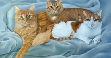 pastel portrait of three orange cats