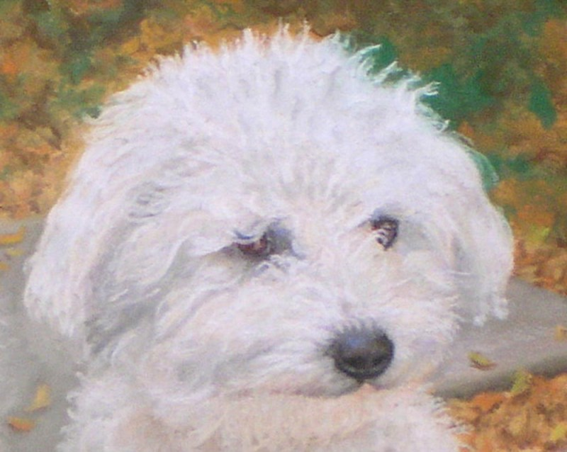 detail of portrait