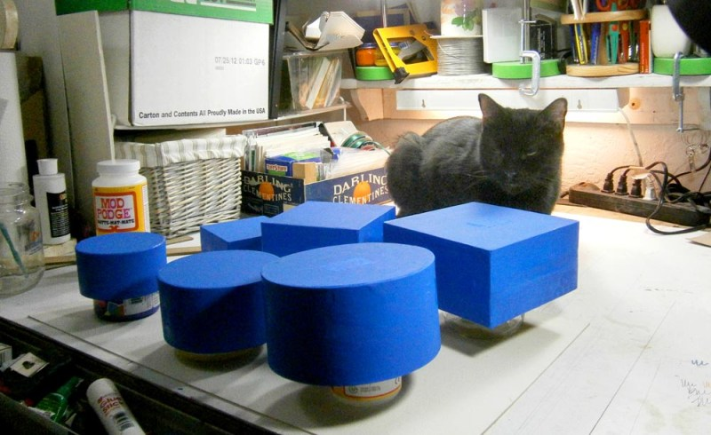black cat with blue boxes