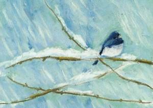 Backyard Birds in Winter