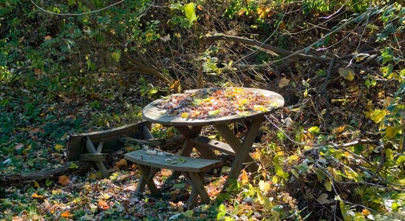 picnic table in autumn yard