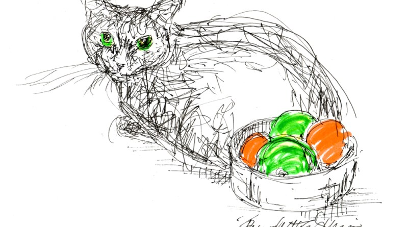 cat with bowl of fruit