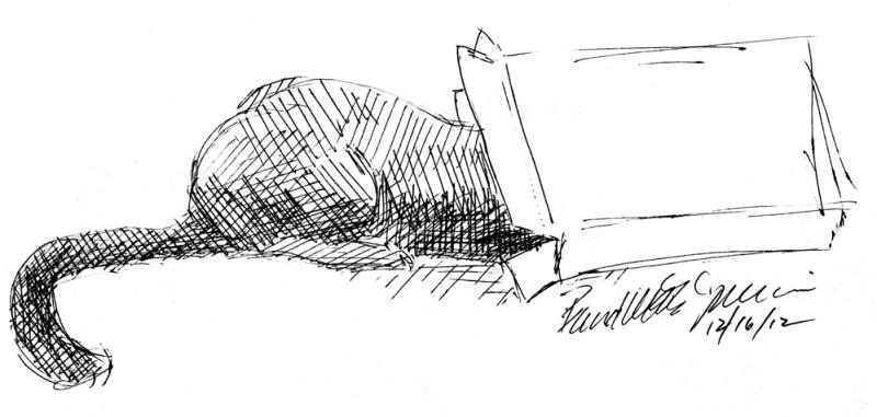 ink sketch of cat in box