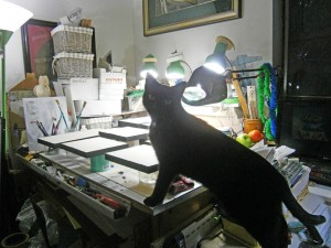 black cat looking at art stuff