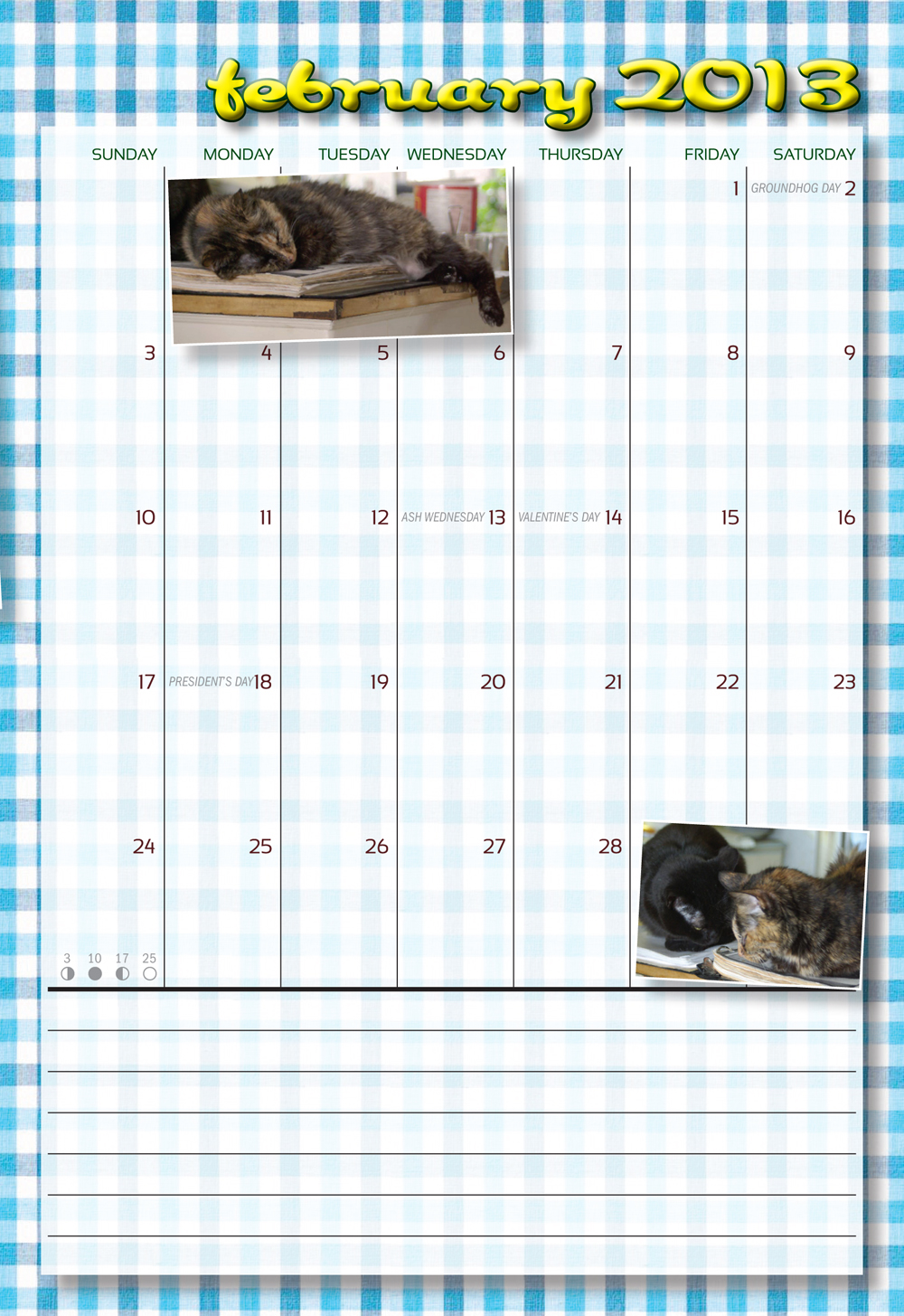 page from cat calendar