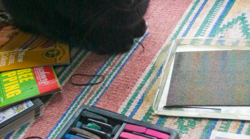black cat with pastels