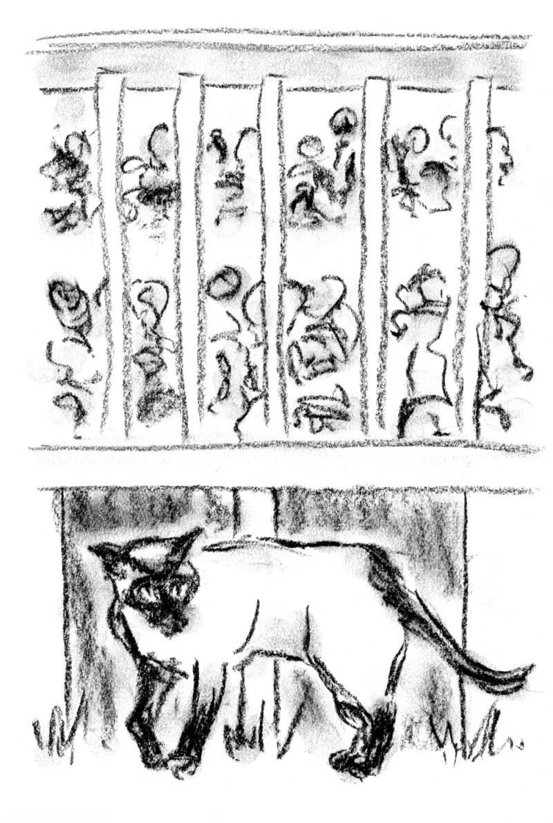 charcol sketch of cat and people
