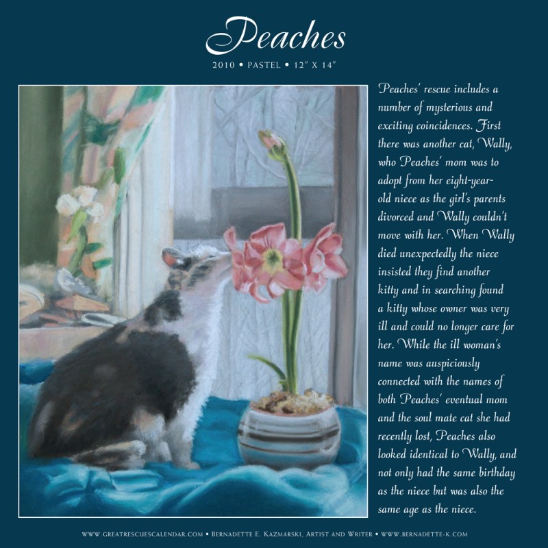"Peaches' page from ""Great Rescues Day Book""."