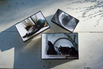 handmade keepsake boxes, shabby chic, cats