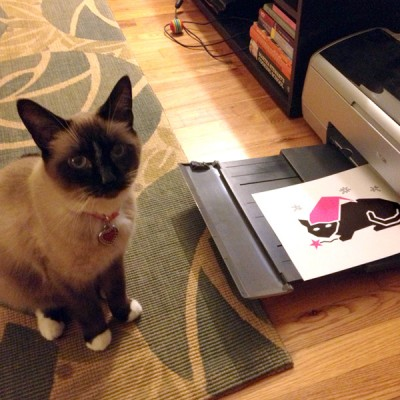 snowshoe cat with printer
