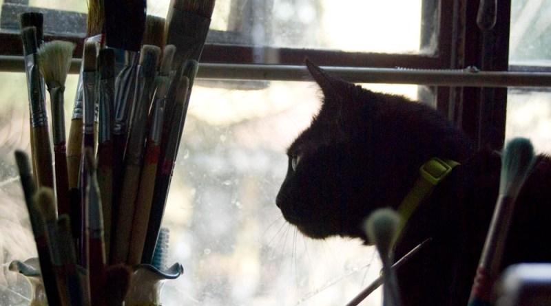 black cat and vase of paintbrushes.