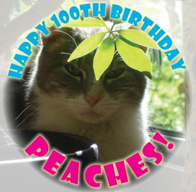 Peaches celebrates her 100th birthday in 2010.