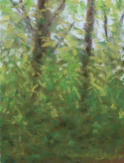 """Spring Morning Leaves"", pastel, 9"" x 12"" © Bernadette E. Kazmarski--the ""other landscape"""