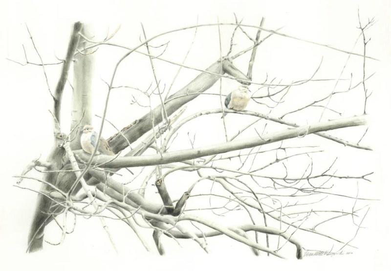 """Biding Time"", pencil with watercolor wash, 21 x 14 © Bernadette E. Kazmarksi"