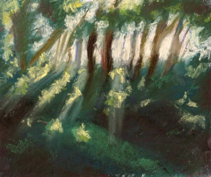 painting of trees with light